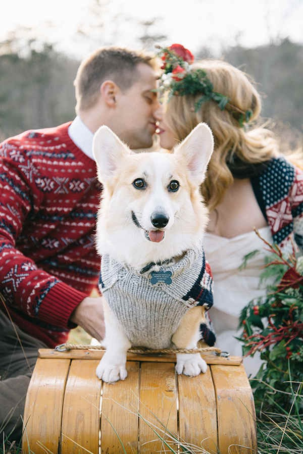 10-festive-styled-wedding-winter-woods-corgi-holiday-sweater